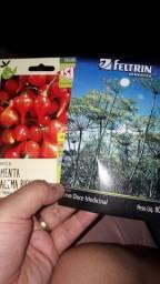 Semente de pimenta e erva doce medicinal e hortelã
