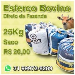 Esterco de gado Bovino entrega na região Norte BH