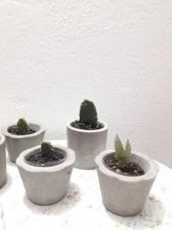 Mini vasinhos de concreto
