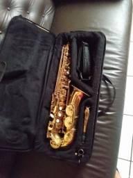 Sax alto dolprim com poquilha blekiley