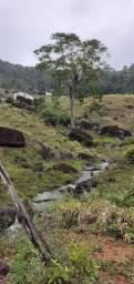 Fazenda Mista Gado e Cacau na serra da Palha em Barro Preto - Ba