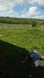 Oportunidade de Fazenda na Cidade de Monte Alegre RN