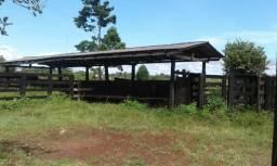 É desapego! Fazenda Silveira 250 hectares