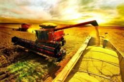 Sócio e Investidor para produção soja e milho