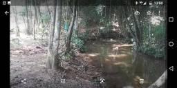 Chácara com água em Cristianópolis troco por Chalé em caldas