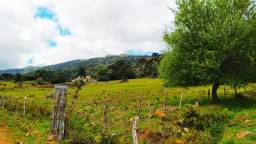 Sítio/fazenda/ terreno em Urubici-SC, interior/ serra catarinense