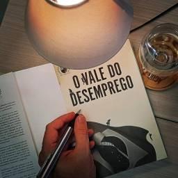"""Livro de Empreendedorismo: """"O Vale do Desemprego"""""""