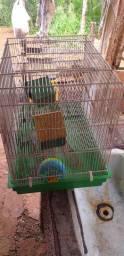 Casinha (gaiola para hamister)