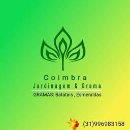 Coimbra Jardinagem & Grama