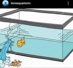 Reforma e produção de aquario
