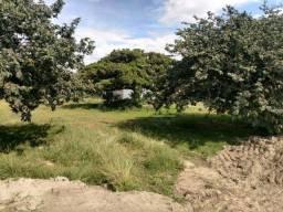 Terreno à venda, 187 m² - Laranjal - Pelotas/RS