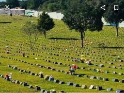 Jazigo cemitério parque senhor do bonfim