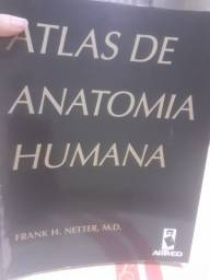 Atlas anatomia humana do Netter