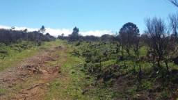 Terreno Rural de Campos de Altitude em Bom Jardim da Serra
