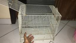 Hamster anão russo + gaiola