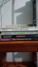 Coleção Zíbia Gasparetto