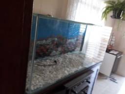 Vendo aquario 450L