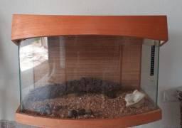 Terrario acabamento madeira