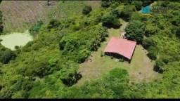 Terreno à venda, 5000m² por R$ 1.500.000 - Centro - Palmácia/CE