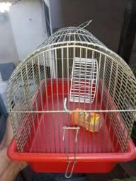 Casa de hamster usada