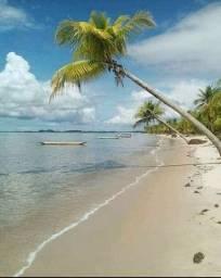 Terreno em Ilha do Contrato