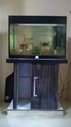 Vendo aquário + móvel +filtro