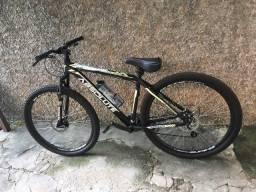 Bicicleta ao 29