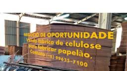 Negócio de oportunidade: Fabricação celulose - papelão