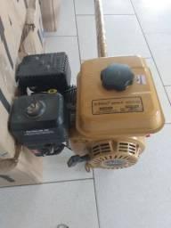 Moto gasolina Buffalo 6.5 CV