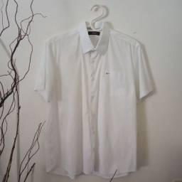 Camisa Aramis