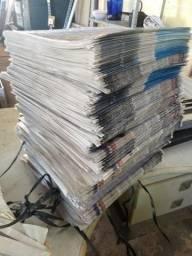 Dinho Jornal para Aviário