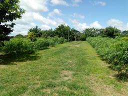 Chácara 5 hectares