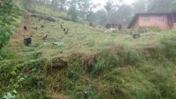 Excelente Terreno - Fazenda Bela Vista