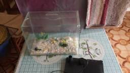 Aquário de vidro com acessórios