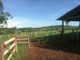 Fazenda 72 Alqueires Barrolândia To
