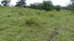 Excelente fazenda com 249 tarefas na zona rural de Antonio Cardoso Bahia