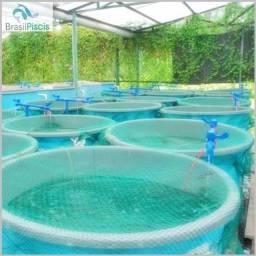 Curso Cultivo de Peixes em Sistemas de Recirculação de Água - RAS