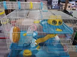 Gaiola gigante pequenos roedores