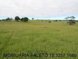 REF 1192 Sítio 21 alqueires, 4 km da Rod Castelo Branco, Imobiliária Paletó