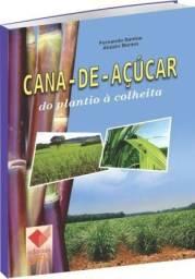Cana-de-açúcar doo Plantio à Colheita