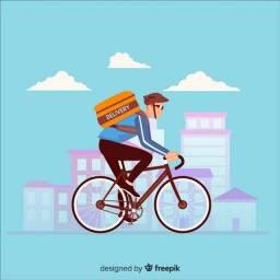 Bike Delivery ZONA SUL