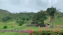 Vende-se Fazenda de 26 alqueires na Serra do Valentim