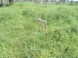 Sitio alugo com 22 hectares a 5 km de Boa Vista/RR, ler descrição do anuncio