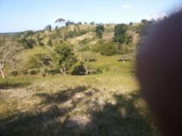 Fazenda em São Sebastião Do Passé