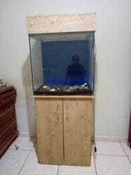Aquario 205 litros