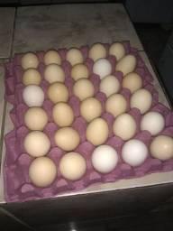 Ovos caipira caixa com 30