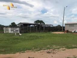 Fazenda à venda Jose Domingos Deputado,, 340 m² por R$ 9.900.000 - Zona Rural - Rosário Oe