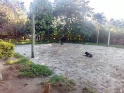 Aluga-se Sítio em Oliveira dos Campinhos - a 100 km de Salvador e 30 km de Feira Santana