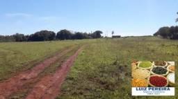FAZENDA A VENDA EM JARAGUARI - MS - DE 1.716 HECTARES (Agricultura)