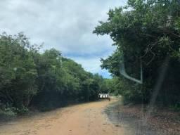 Oportunidade - Fazenda em Nisia Floresta/RN